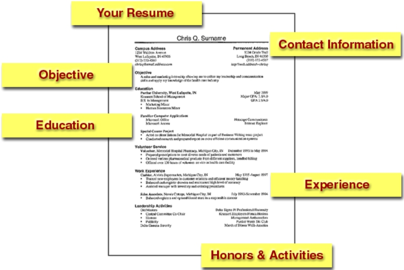 Basic Resume Tempaltes Free Tutorials 5