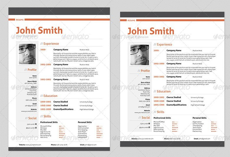 Resume Template  Sample Professional Resume Templates